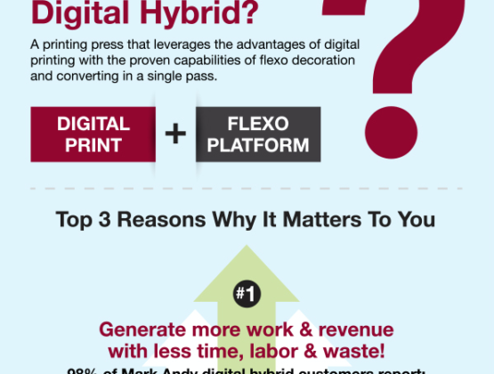 Meaning of Hybrid Infographic