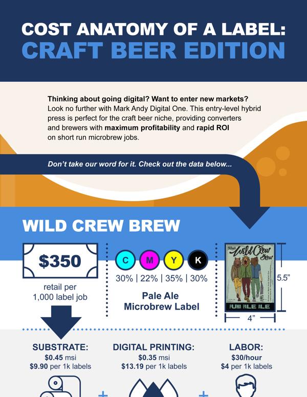 Craft Beer infographic